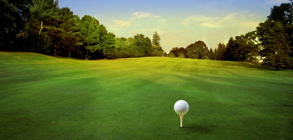 <h1>Ormeau Golf Club</h1><p>Your Local Golf Course</p>